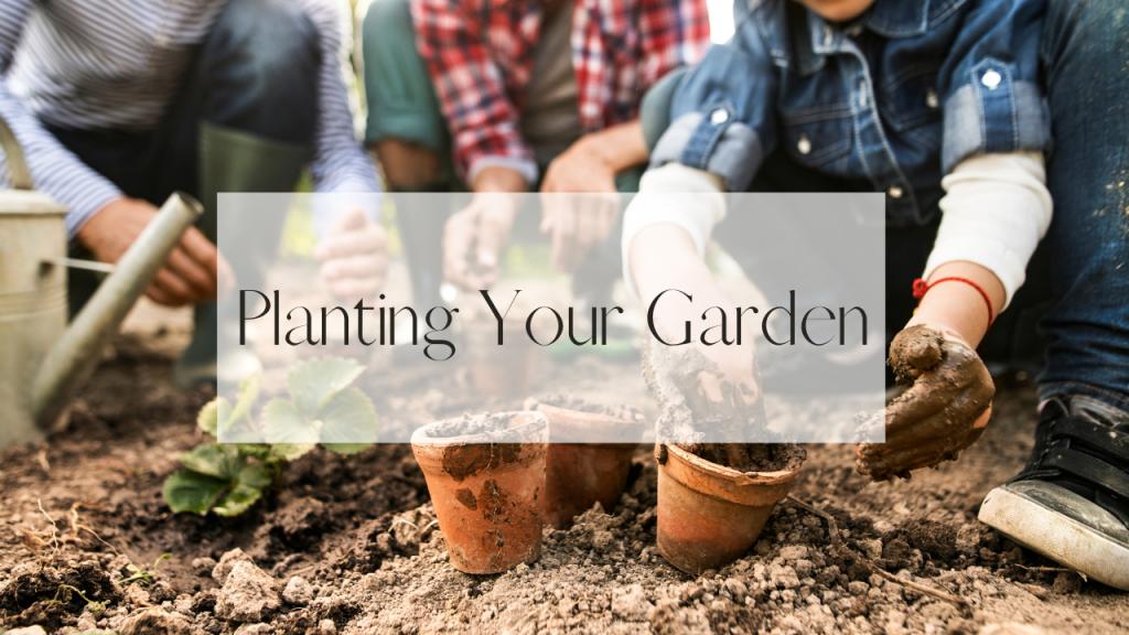 family transplanting plants into garden dirt.
