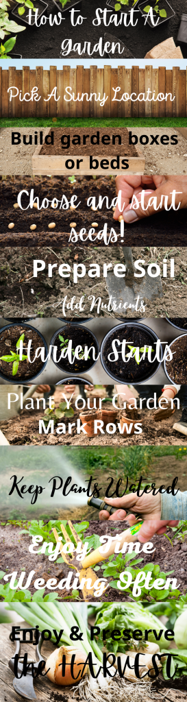 how to start a garden from start to finish