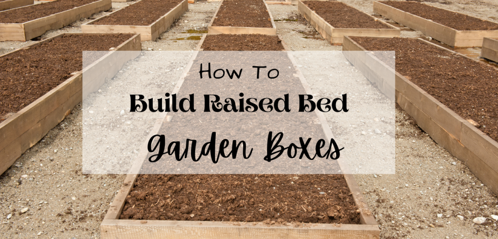 raised garden beds filled with dirt with words