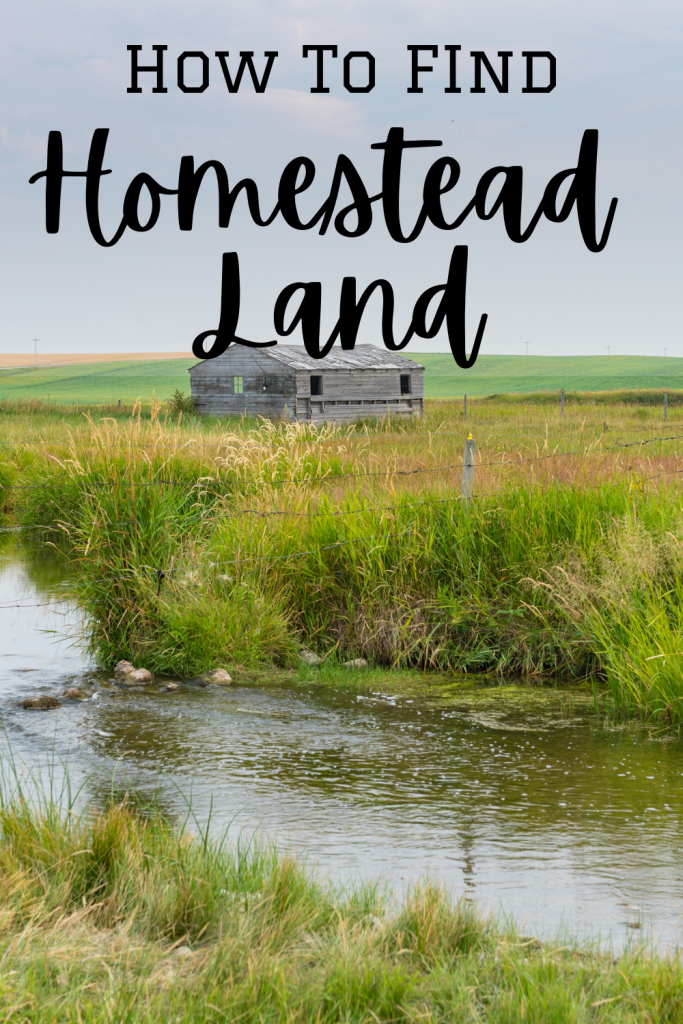 homestead land with a creek