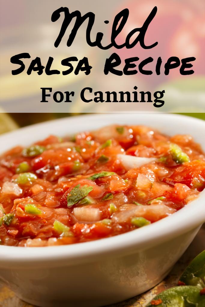 mild salsa recipe text
