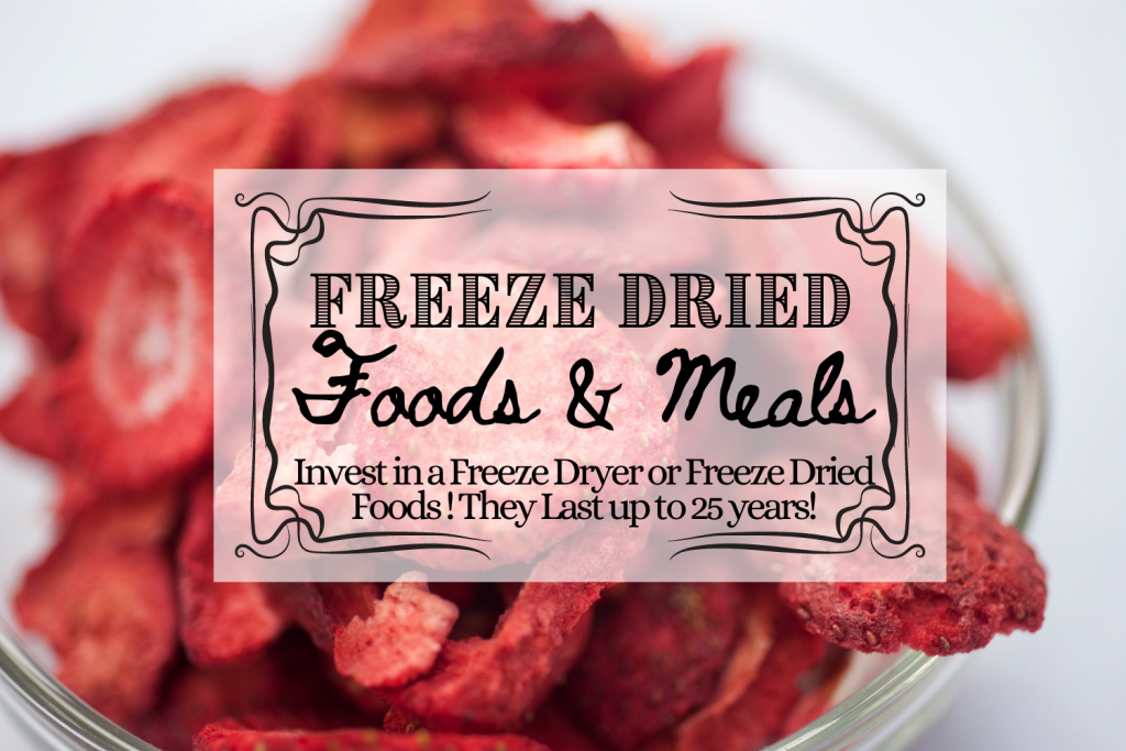 freeze dried strawberries food storage and text